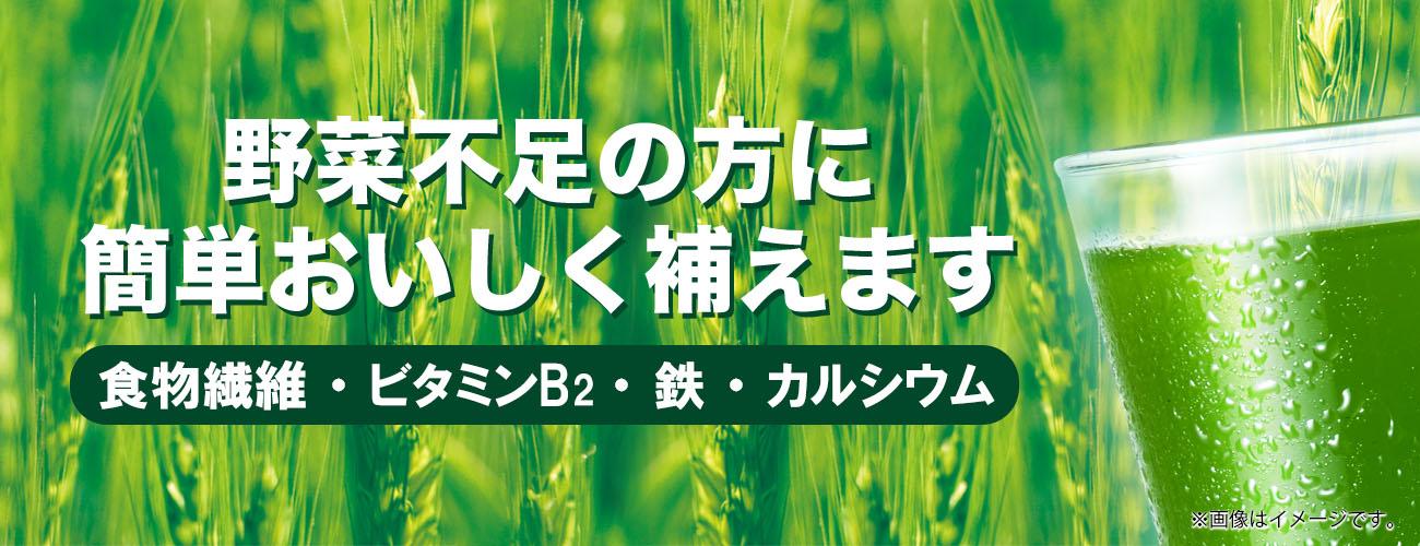 若葉 大麦